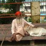「禁止全國買賣牛隻以供宰殺」引發爭議 印度最高法院同意延後實施