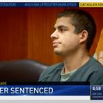 被控虐待、肢解、性侵16隻貓咪 美國加州26歲男子遭重判16年