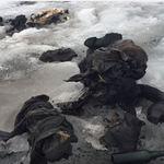 瑞士夫婦出門餵牛離奇消失 75年後阿爾卑斯山冰川相擁現蹤