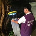 疑住家環境感染 桃市第4例日本腦炎確診