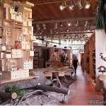 來一趟荷蘭森林雜貨風紀念品店,比教室裡紙上談兵的自然課,更讓孩子驚喜連連!