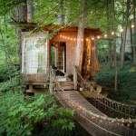 來去山裡住一晚!Airbnb史上最搶手房間,美如仙境的綠林小木屋讓全世界都驚艷…