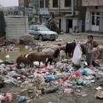內戰經年還不夠慘?葉門爆發50年來最大霍亂疫情 4個月50萬人染病