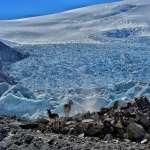 只為途中與你相遇──隨青藏高原科考隊追尋「神山聖湖」間的野生動物