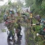 颱風來襲!保險業者啟動「風災保戶關懷計劃」,陪伴受災保戶度過難關