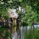 連日本當地人也搶著一訪的神級秘境!綠林圍繞的水上小屋最愜意,免費美景在這裡…