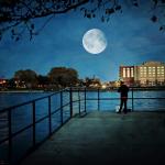 中秋夜將有好天氣?吳德榮揭模擬預測:3大地區最適合賞月