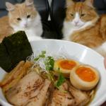 日男餐餐吃拉麵竟讓視力快速惡化!眼科醫師分享,6種讓眼睛恢復年輕的好食材