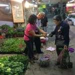 花開富「粿」慶重陽 板橋花市消費送好禮