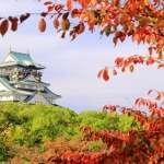 第一次玩大阪也不必緊張!錯過就像沒去日本的3處精華美景,造訪後就算內行人啦