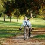 孤窮老人過寒冬!每4名獨居老人就有1人中低收入