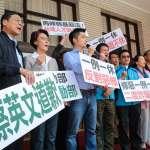 孫慶餘專欄:如果國民黨不當「忠誠反對黨」