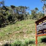 林務局獲企業贊助 還願山林計畫積極造林