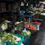 平復菜價大跌!台北果菜市場明日交易量 上限降為2500噸