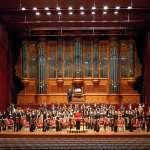 楊緬因專欄:我的管風琴記憶
