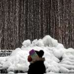 「炸彈氣旋」來襲!美國化身「冰雪世界」 至少17人凍死、逾1700航班取消