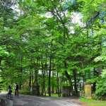 東京近郊最美的風景!日本人、觀光客一致盛讚的秘境「輕井澤」,4大必訪景點全公開