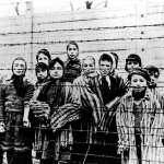 一座集中營如何殺掉110萬人?奧斯威辛解放74周年 25名納粹生還者留下實錄