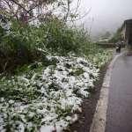 跨年上山看雪?31日最低溫14度 山區有機會降雪