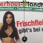 「越色越好賣」仍是金科玉律?德國如何進行廣告自律