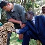 NBA》姚明成綠巨人 赴非洲拯救犀牛和大象