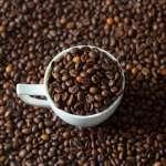 喝咖啡會喝下致癌物質嗎?哈佛大學營養學者:咖啡可以降低罹癌風險!