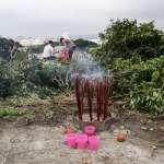 清明掃墓千萬小心「恙蟲病」!致死率超高、台灣全年有病例…一篇搞懂該怎麼預防!