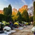 火葬、土葬、海葬或樹林葬,要怎麼葬任您選!骨灰罈還可環境分解 清明節一探德國殯葬文化