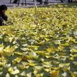「當風兒吹過耳邊,我會想著那是你們在一起」世越號海難四周年,文在寅宣布4月16日為「國民安全日」
