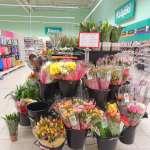 花是奢侈品,還是生活必需品嗎?波蘭人的答案讓台灣人超吃驚
