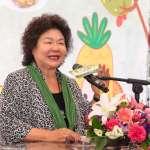 觀點投書:總統府祕書長陳菊這樣到處都在輔選,可以嗎?