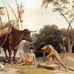 沖繩人祖先來自台灣?日學者來台打造「史前竹筏」,揭3萬年前人類登陸日本的考古之謎...