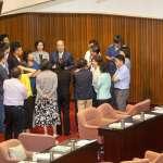喜樂島促修公投法 民進黨:尊重立院黨團共同決議,盼一致對外