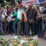不滿鳳梨價格一路大崩盤 200南部農民行政院前砸鳳梨抗議