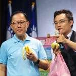 宣示年底聯合競選網站上線 國民黨大嗑香蕉芭樂