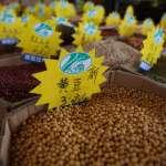 龍鷹大戰、影響幾何?中國人的餐桌、學費和房地產有什麼變化