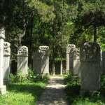 「死無葬身之地」!墓地爆滿又爆貴,沒想到中國還用「這項政策」逼「死人」