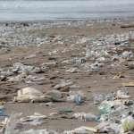 進口廢塑摻雜料 業者:誰會花錢買無用垃圾?