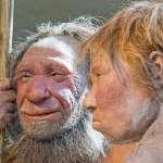 智人崛起導致尼安德塔人滅絕?最新科學研究:近親繁殖加上壞運氣才是原因!