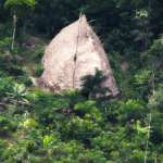 空拍影像一窺巴西亞馬遜原始部落!與世隔絕原住民疑為大屠殺倖存者