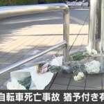 邊玩手機邊騎單車撞死人!日本女大生被判2年徒刑、獲4年緩刑