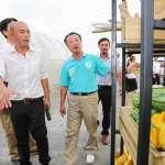 馬英九稱嘉義縣綠營分裂「上天有眼」洪耀福:他不了解地方,國民黨不要高興太早
