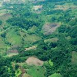 難戒「古柯鹼」,哥倫比亞推動農民改種普通作物無效,聯合國:2017年產量再創新高