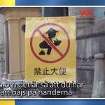 瑞典電視節目遭指控「辱華」學者:主持人是在諷刺瑞典人的「宗主國」態度