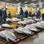 最後一次凌晨鮪魚拍賣之後,「東京廚房」築地市場搬家了 83年歷史畫下句號