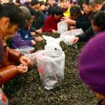 太誇張!中國代購大軍橫掃全球,推倒貨架搶名牌、一次瘋買400件,美好市多超困擾這招反擊