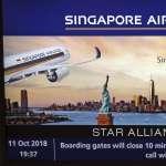 坐到雙腳發麻、屁屁作痛!全球最長航線重啟 新加坡直飛美東──18小時45分鐘