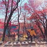 誰說看楓葉只能去日本?2018韓國秋天賞楓攻略來啦!楓紅日期預測、6大絕美景點看這裡