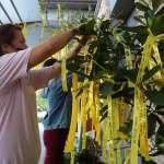 普悠瑪事故聯合公祭 31日在台東殯儀館舉行
