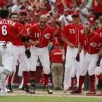 MLB》各隊誰將會成為熱門交易籌碼?官網預測國聯中區篇
